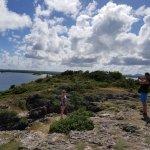 Looking towards the bay on Bird Island