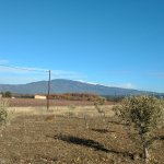 Mont Ventoux vu de Mazan