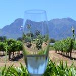 Photo of Nederburg Wines