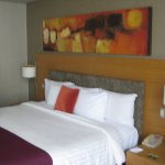 Habitacion con cama king-size