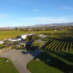 Expansive grounds and Cellar Door