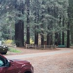 Orchard Hill campsite
