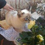 Agriturismo Nonna Maria Foto