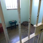 Nelson's cell