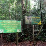 Foto de Kakum National Park