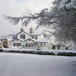 Winter Wonderland at The Station House Hotel