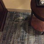 Foto de DoubleTree by Hilton Cincinnati Airport Hotel