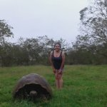 Junto a una tortuga gigante