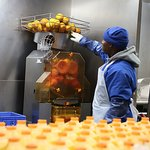 Real oranges go into our juice machine
