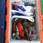 Photo de Phuket Fishing Charters