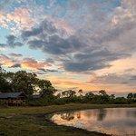Photo de Wilderness Safaris Seba Camp