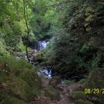 Muckross House: Photo # 9; Another view of waterfall
