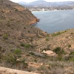 View towards Albir