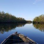 Photo of Tour The Glades - Private Wildlife Tours