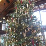 Christmas tree in Kanu Lodge