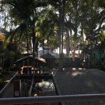 Paradise On The Beach Resort Palm Cove Foto