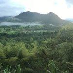 Vista de la Cabaña 1