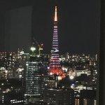東京タワーが綺麗に見えます。