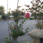 Photo de Holiday Inn Rock Hill