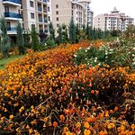 Grand Ozgul Thermal Holiday Village Foto