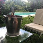 We purchased a bottle from a local winery, and enjoyed poolside