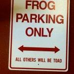 Frog Pond Foto