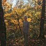 Elsie Holmes Nature Park照片