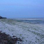 Uroa Beach