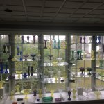 Glass exhibit