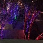 Vitruvian Park Photo