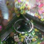 The Omkarshwar Jyotirlinga
