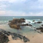 Coastal walk Photo