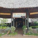 Voi Safari Lodge Photo