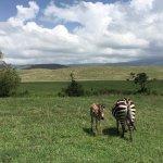 Valokuva: Wayo Africa