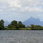 Photo de Tweed Endeavour Rainforest Cruise