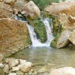 Bokek River