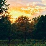 Orchard Hills Park Photo