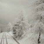 Zima na Żarze