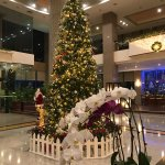 Halong Plaza Hotel Photo