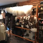 Animal skins for sale