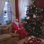 The Christmas tree.