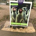 Banham Zoo Photo