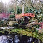 Batsford Arboretum Photo