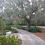 Photo of Harry P. Leu Gardens