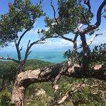 ภาพถ่ายของ Fitzroy Island National Park