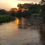 Photo of At The River Ishasha