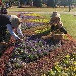 Photo of Maymyo Botanical Garden (National Kandawgyi Park)