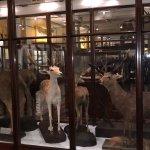 Foto de Museo Nacional de Arqueología de Irlanda