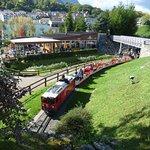 Train running through beautiful grounds