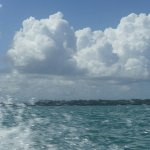 Photo of Under sea Panama